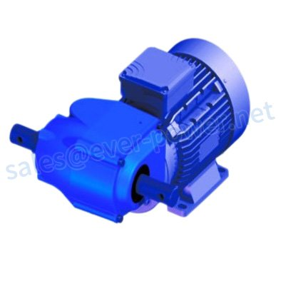 Motor worm gearboxes