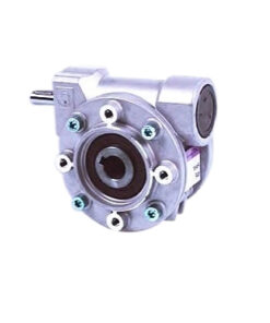 Worm Reducer