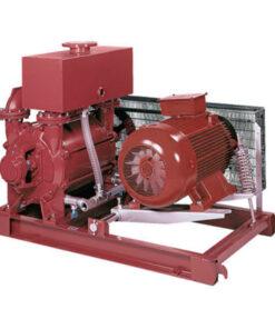 Reciprocating vacuum pump - Reciprocating vacuum pump 247x296
