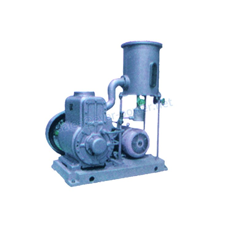 Series H-7 rotary piston vacuum pumps