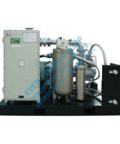 Special Industrial Gas Compressor