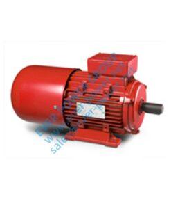 motore speciale per riduttore di velocità Y2EJ - Y2EJ 247x296