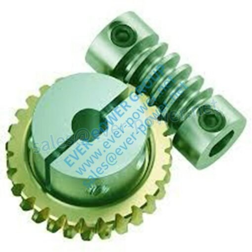 worm and gear