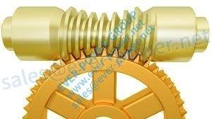 Globoid Worm Gear
