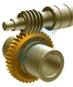 Gear Worm Wheel