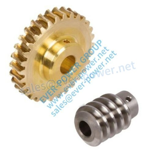 precision worm gear