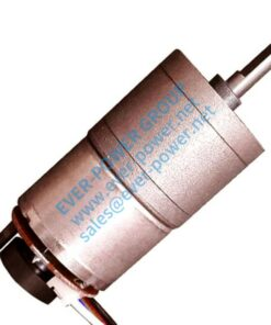 Motore a basso numero di giri - 59 Motoriduttore piccolo 1 247x296