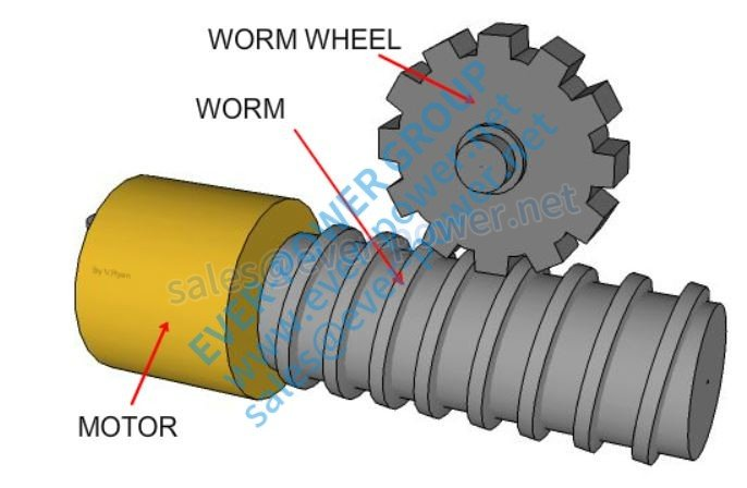 Worm Wheels For Worm Drive
