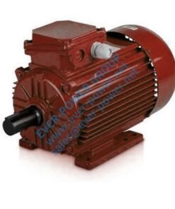 83 Single Phase Induction Motor
