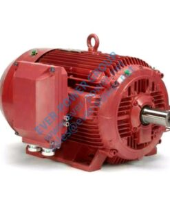 89 Ac Induction Motor