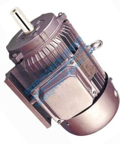 91 3 Phase Induction Motor