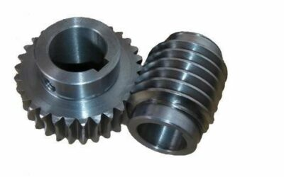 Worm And Worm Gear