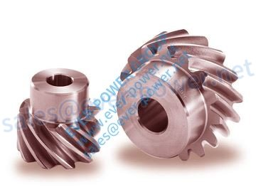 Stainless Steel Screw Gears